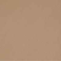 CCS-Desert-Sand-broomRGB-lil
