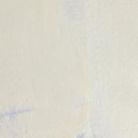 CCS Metallic Platinum White