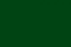 CCS Rembrandt Antique Green Concrete Stain