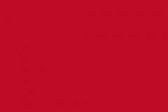 CCS Rembrandt Aztec Red Concrete Stain
