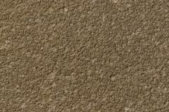 CCS Stylepave Fossil